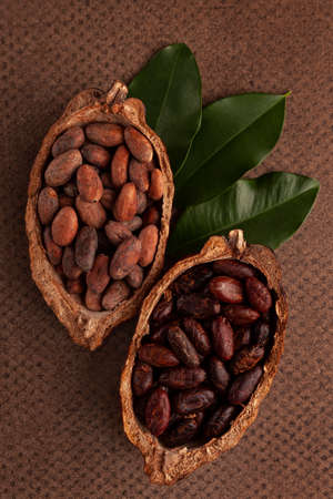 Cocoa bean background. Flat lay, top view. Culinary, gourmet chocolate eating.
