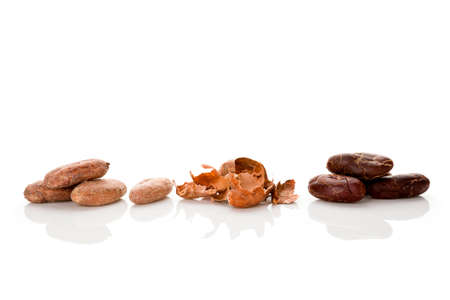 Fresh roasted cocoa beans and peels isolated on white background. Healthy superfood. Stok Fotoğraf