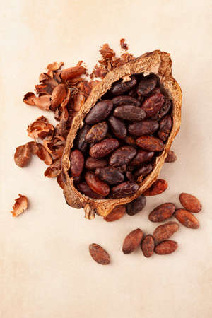 Fresh roasted cocoa beans in pod and peels on beige background. Superfood.
