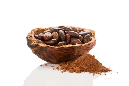 Cocoa powder and fresh roasted beans isolated on white background.