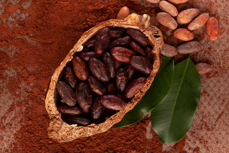 Composition with cocoa pod, powder, beans and  leaves on table. Delicious dark chocolate background. Stok Fotoğraf