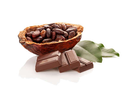 Composition with cocoa beans, leaves and chocolate isolated on white background.