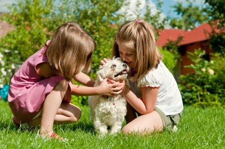 ni�as jugando: Peque�as ni�as cute jugando con su perro en el jard�n detr�s de casa de familia  Foto de archivo