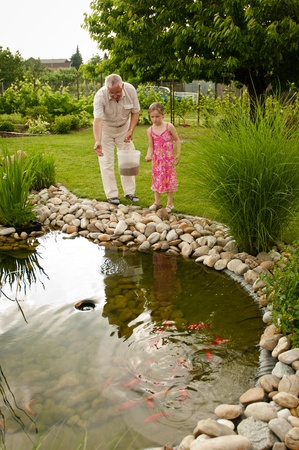 children pond: Feeding fish