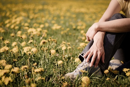 Torso of woman sitting in beautiful field of dandelions photo