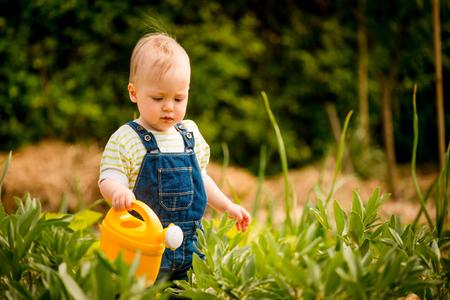 regando plantas: Poco bebé riega las plantas en el jardín del patio trasero con regadera Foto de archivo