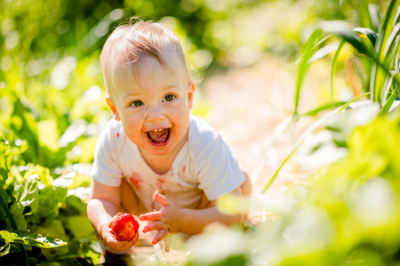 イチゴと小さな子供 写真素材 - 37155443