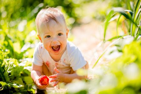 frutilla: Peque�o ni�o con la fresa