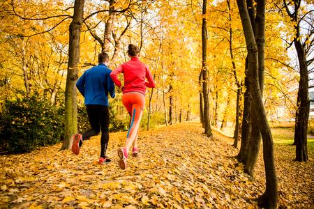 personas trotando: Correr juntos - pareja joven que activa en parque del otoño, visión trasera