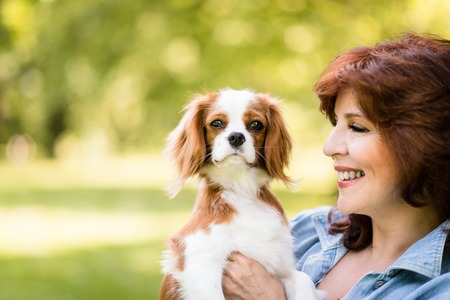 animal park: Mature woman playing with her cavalier dog outdoor in park