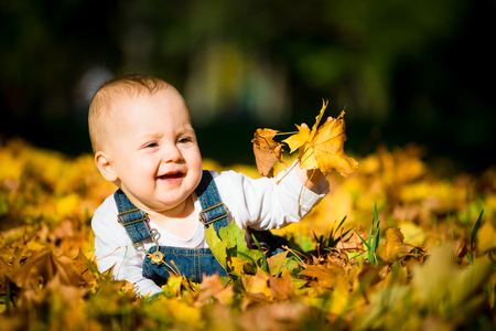 bebe gateando: Beautiful baby crawling  in fallen leaves - autumn scene