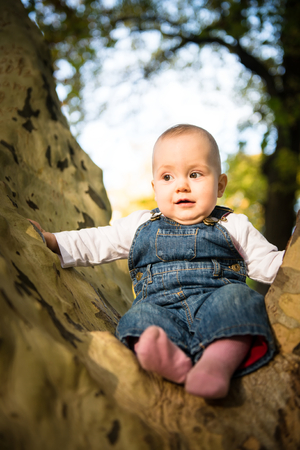 affraid: Cute little baby sitting on big tree with fear in her eyes Stock Photo