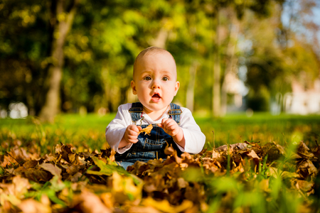 babby: Babby sitting in fallen autumn leaves with surprise expression