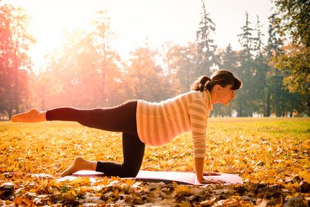 ejercicio: Fitness mujer embarazada hacer ejercicio al aire libre en la naturaleza del otoño Foto de archivo