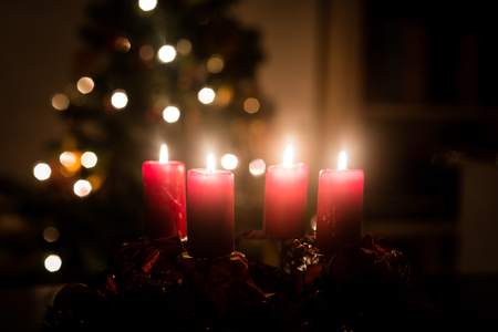 candle lights: Christmas advent wreath with red burning candles. Lights on x-mas tree in background Stock Photo