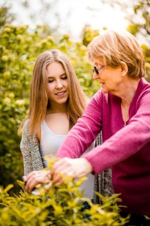 grandkids: Senior woman shows to her teenage granddaughter how to prune plants in backyard garden