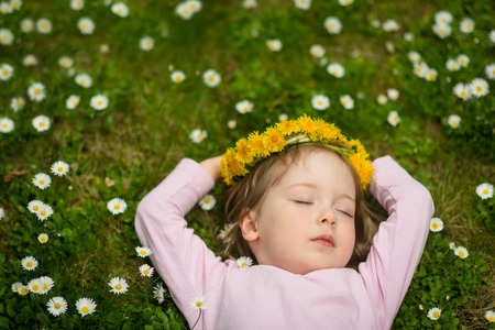 flower head: Spring time - relax in flowers