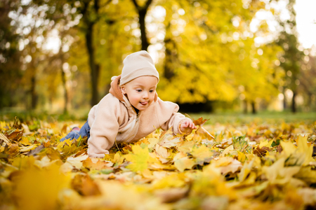 Toddler boy crawling over fall foliage