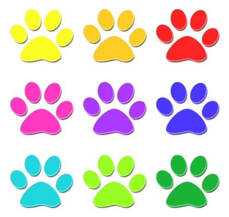 animal track: Glossy paw print