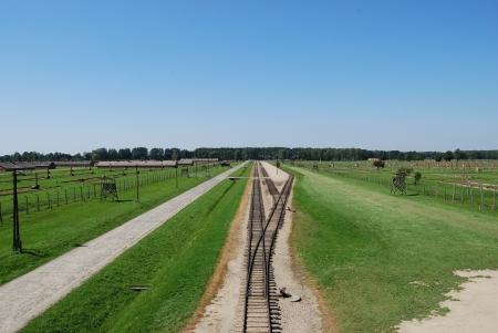 auschwitz: Auschwitz Birkenau - trailway Editorial