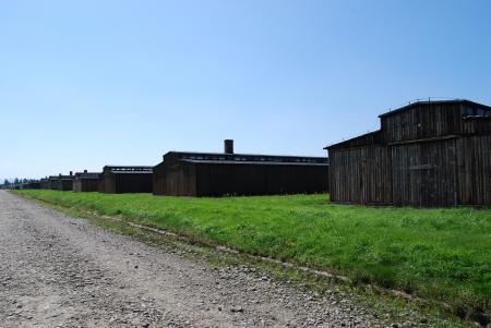 auschwitz: Auschwitz Birkenau Editorial
