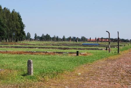 auschwitz: Auschwitz Birkenau - Canada
