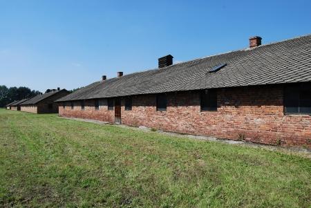 birkenau: Birkenau - II, block 25 Editorial