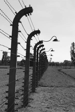 Birkenau - barbed wire Stock Photo - 22383893
