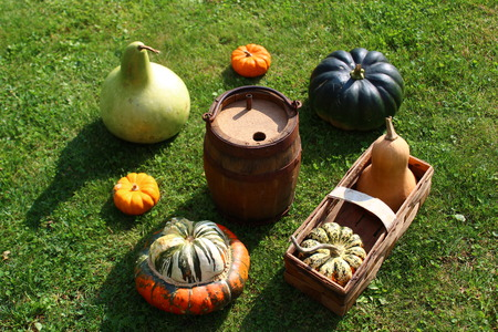 Gourds with cider