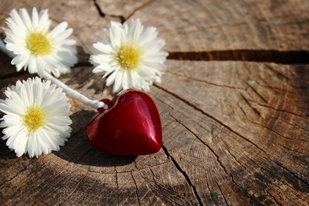 A red heart and flowers on a wooden background