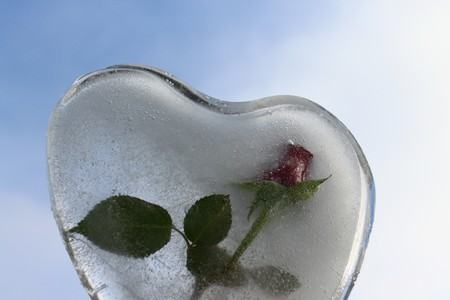 Heart of ice with a rose in front of the blue sky