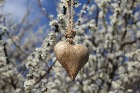 Wooden heart in a blossoming bush 스톡 콘텐츠