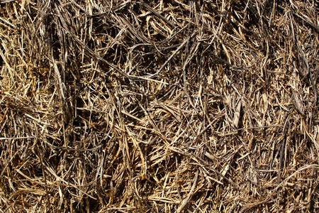 brown background with old straw Stock fotó