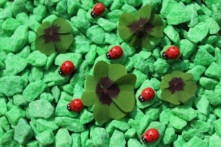 lucky clover and ladybirds on green decoration granules