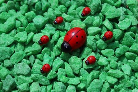 wooden ladybirds on green decoration granules