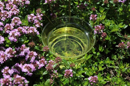 Thyme tea and blossoming thyme