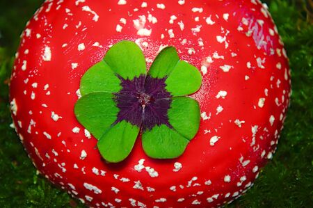 Fly agaric with a lucky clover in the forest and the text good luck