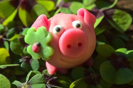 Marzipan pig in lucky clover