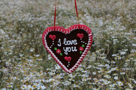 gingerbread heart in front of a field with marguerites with the text I love you