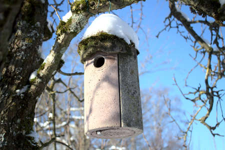 Bird house covered with snow in the winter