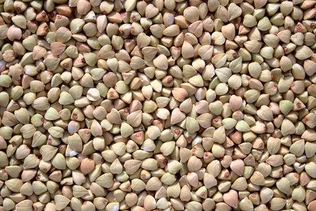 a background with ripe buckwheat Archivio Fotografico