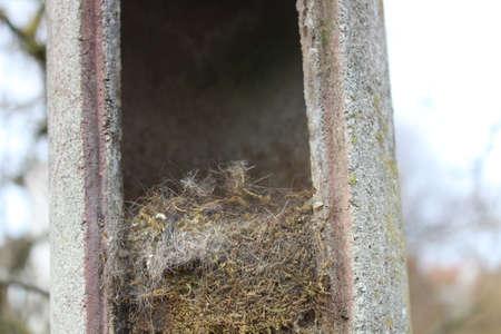 open birdhouse in the winter