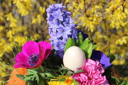 blossoming flowers and an easter egg