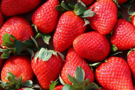 a background with many ripe strawberries Archivio Fotografico