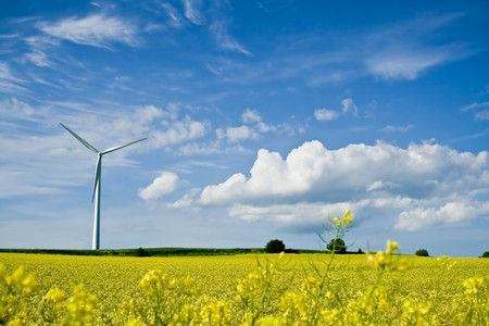 A windmill in a rape field on a background of blue sky Stock Photo