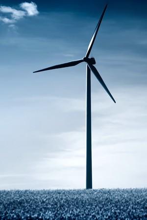 A blue duotoned windmill in a rape field