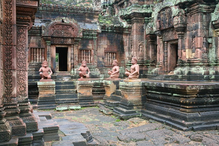 monkies: Temple in Cambodia