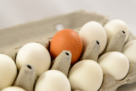 whites: brown and white eggs in an egg crate Stock Photo