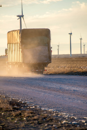 plant gossypium: cotton truck with a load of cotton during harvest Stock Photo