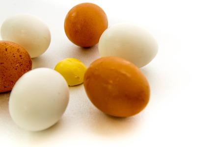 brown and white eggs and hard boiled yolk